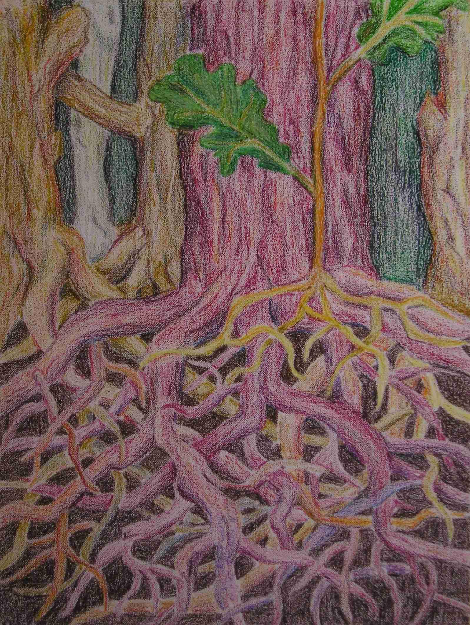 Wurzeln schlagen zwiebeln ölpastellkreide auf leinen